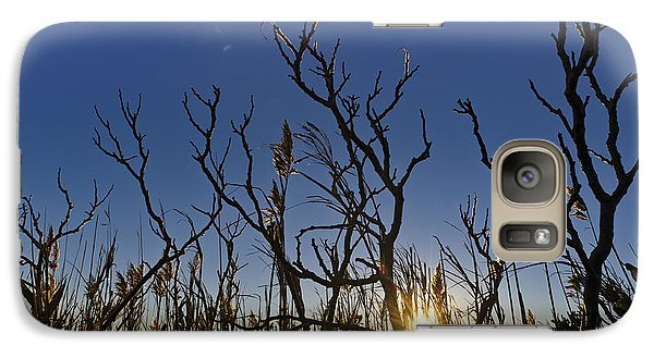 Galaxy Case featuring the photograph Cape Cod Marsh At Sunset by Marianne Campolongo