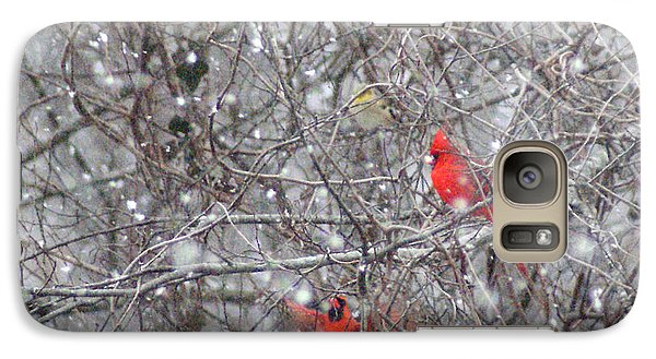 Galaxy Case featuring the photograph Cardinals In The Snow by Rick Friedle