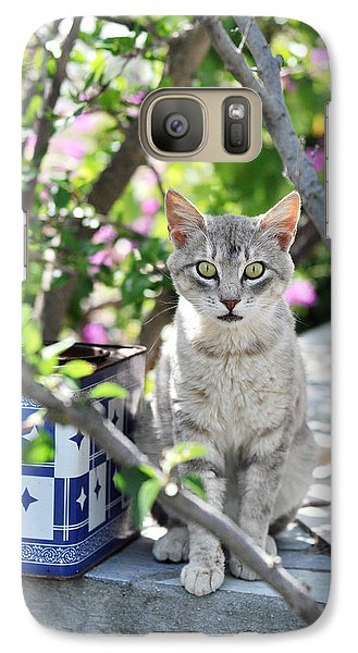 Galaxy Case featuring the photograph Cat Of Mykonos by Laura Melis