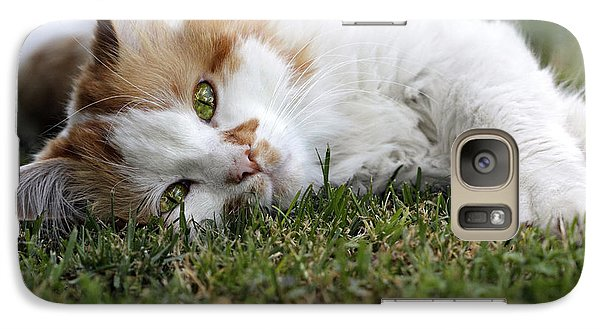 Galaxy Case featuring the photograph Cat On The Grass by Raffaella Lunelli