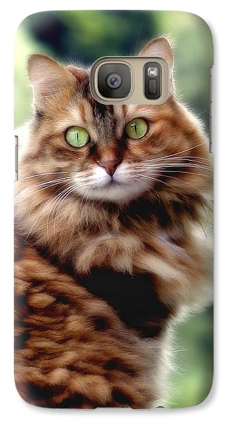 Galaxy Case featuring the photograph Cat Portrait by Raffaella Lunelli