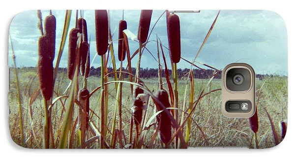 Galaxy Case featuring the photograph Cat Tails by Bonfire Photography