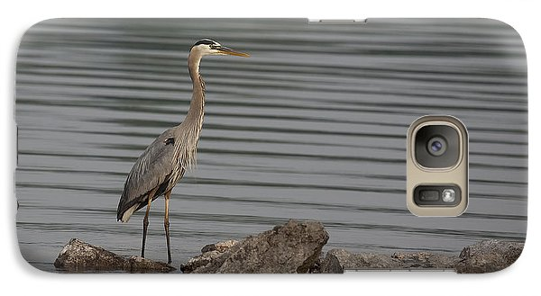 Galaxy Case featuring the photograph Cautious by Eunice Gibb