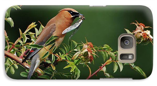 Galaxy Case featuring the photograph Cedar Waxwing With A Bug by Jim Boardman