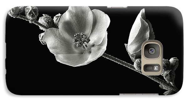 Galaxy Case featuring the photograph Chaparral Mallow In Black And White by Endre Balogh