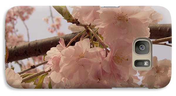 Galaxy Case featuring the photograph Cherry Blossom 2 by Andrea Anderegg