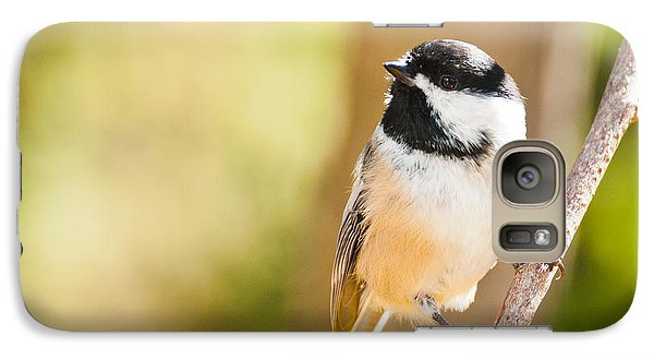 Galaxy Case featuring the photograph Chickadee by Cheryl Baxter