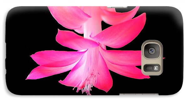 Galaxy Case featuring the photograph Christmas Cactus by Steven Clipperton