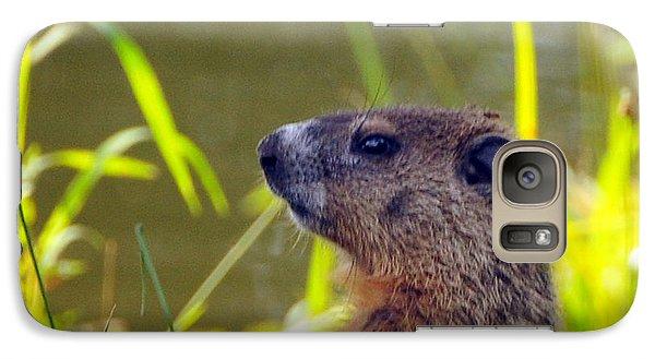 Groundhog Galaxy S7 Case - Chucky Woodchuck by Paul Ward