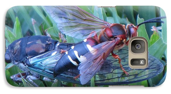 Galaxy Case featuring the photograph Cicada Killer by John Crothers
