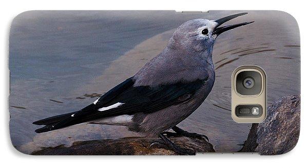 Galaxy Case featuring the photograph Clark's Nutcracker by Cheryl Baxter
