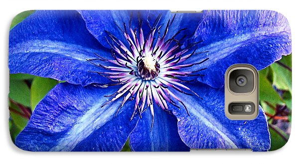 Galaxy Case featuring the photograph Clematis by Nick Kloepping