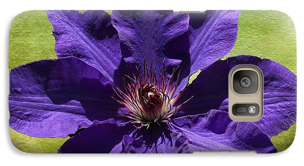 Galaxy Case featuring the photograph Clematis On Stone by Rick Friedle