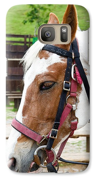 Galaxy Case featuring the photograph Closeup Of Horse by Yew Kwang