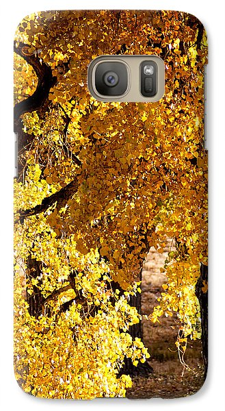 Galaxy Case featuring the photograph Colorado Gold by Colleen Coccia