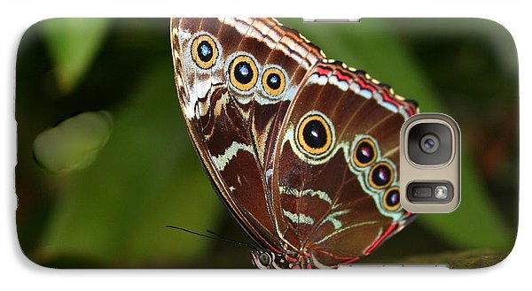 Galaxy Case featuring the photograph Common Blue Morpho by Laurel Talabere