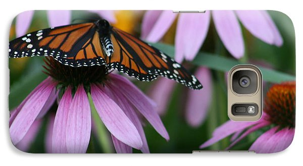 Galaxy Case featuring the photograph Cone Flowers And Monarch Butterfly by Kay Novy