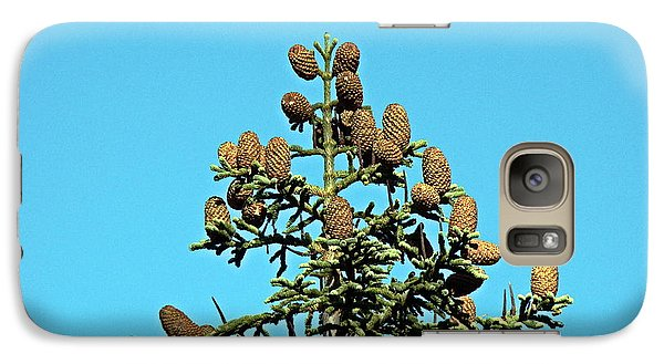 Galaxy Case featuring the photograph Cones by Nick Kloepping