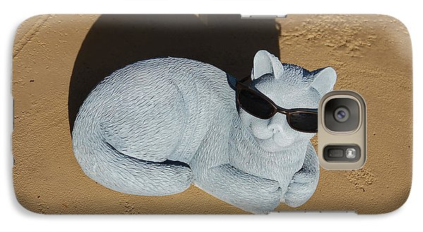 Galaxy Case featuring the photograph Cool Cat by Aimee L Maher Photography and Art Visit ALMGallerydotcom