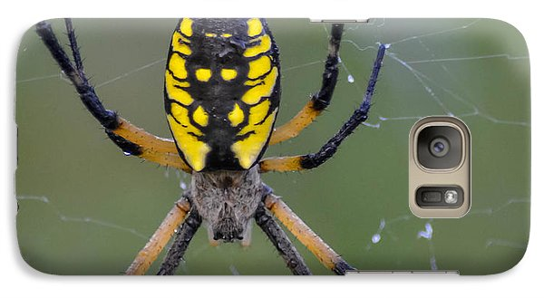 Galaxy Case featuring the photograph Corn Spider by Brian Stevens