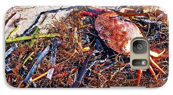 Galaxy Case featuring the photograph Crab Boil by William Fields