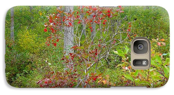 Galaxy Case featuring the photograph Cranberries With Early Autumn Colors by Jim Sauchyn