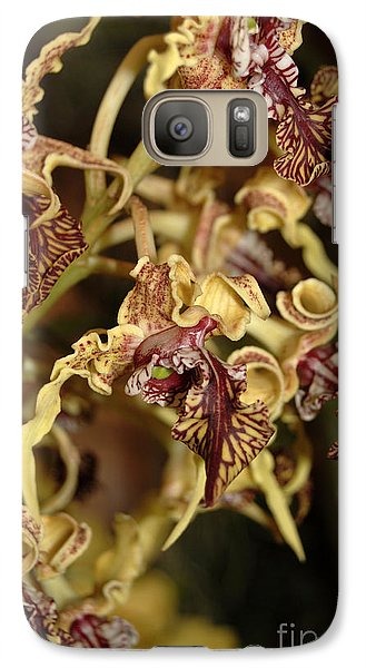 Galaxy Case featuring the photograph Crazy Curly Orchid by Eva Kaufman