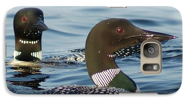 Galaxy Case featuring the photograph Curious Loons by Steven Clipperton