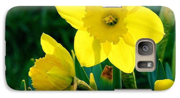 Galaxy Case featuring the photograph Daffodils by Sherman Perry