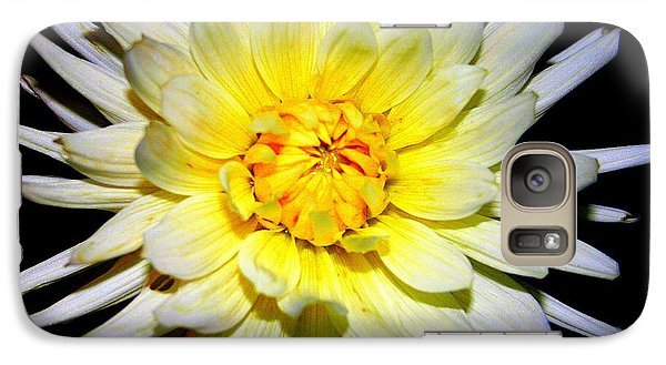 Galaxy Case featuring the photograph Dahlia In White And Yellow by Laurel Talabere