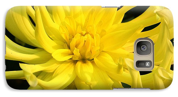Galaxy Case featuring the photograph Dahlia In Yellow by Laurel Talabere
