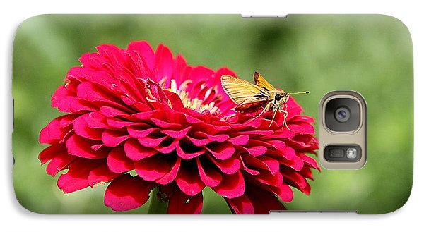 Galaxy Case featuring the photograph Dahlia's Moth by Elizabeth Winter