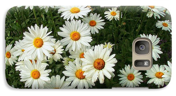 Galaxy Case featuring the photograph Daisies by Wendy McKennon