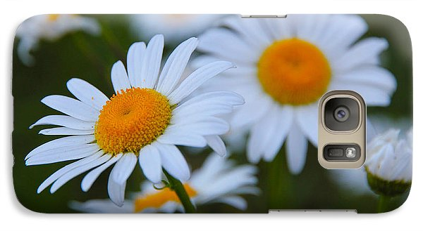 Galaxy Case featuring the photograph Daisy by Athena Mckinzie