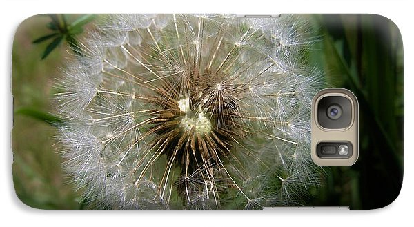 Galaxy Case featuring the photograph Dandelion Going To Seed by Sherman Perry