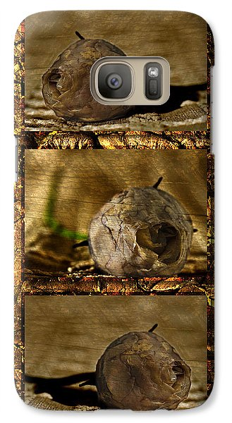 Galaxy Case featuring the photograph Dead Rosebud Triptych by Steve Purnell