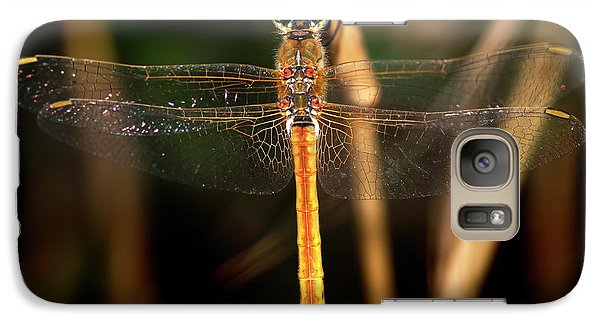 Galaxy Case featuring the photograph Dragon Fly 1 by Pedro Cardona