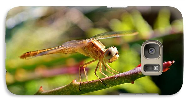 Galaxy Case featuring the photograph Dragonfly by Werner Lehmann