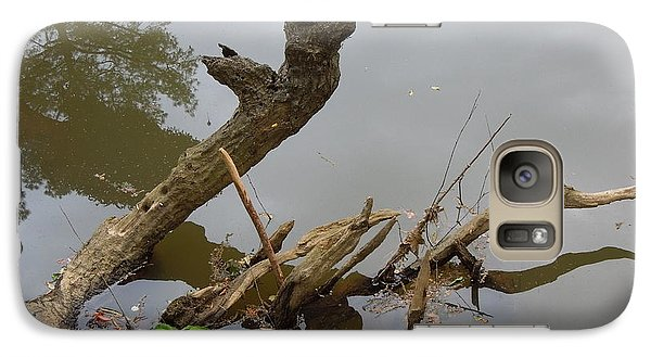 Galaxy Case featuring the photograph Driftwood by Renee Trenholm