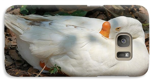 Galaxy Case featuring the photograph Duck Resting by Fotosas Photography