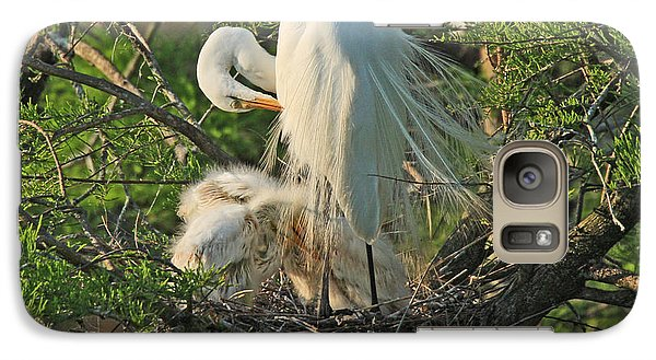 Galaxy Case featuring the photograph Egret - Mother And Baby Egrets by Luana K Perez
