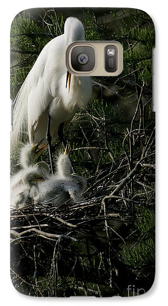 Galaxy Case featuring the photograph Egret Bird - Mother Egret And Babies by Luana K Perez