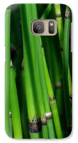 Galaxy Case featuring the photograph Equisetum by Judi Bagwell