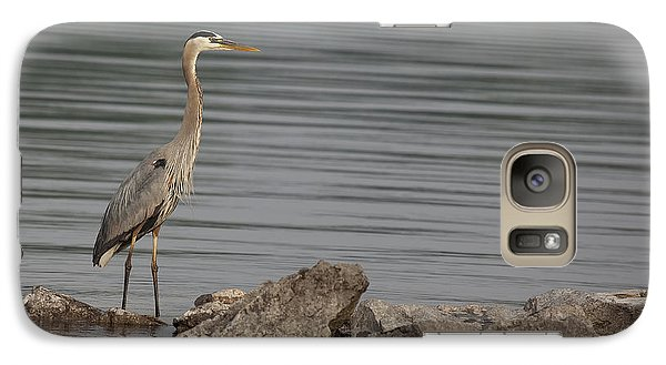 Galaxy Case featuring the photograph Ever Alert by Eunice Gibb
