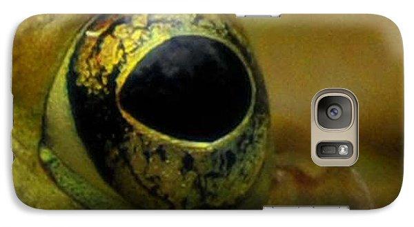 Eye Of Frog Galaxy S7 Case by Paul Ward