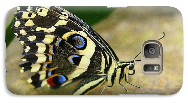 Galaxy Case featuring the photograph Eye To Eye With A Butterfly by Laurel Talabere