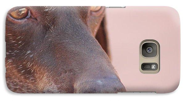 Galaxy Case featuring the photograph Eyes Of The Hound by Carolina Liechtenstein