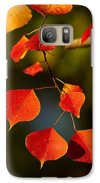 Galaxy Case featuring the photograph Fall Color 2 by Dan Wells