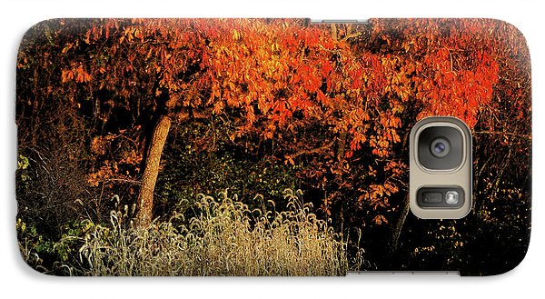 Galaxy Case featuring the photograph Fall Colors 2 by Vilas Malankar