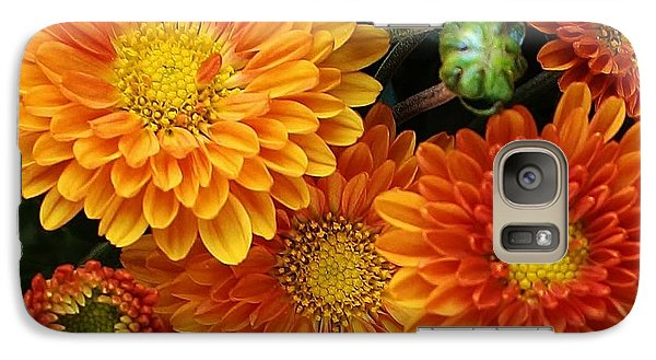 Galaxy Case featuring the photograph Fall Colors by Bruce Bley